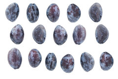 Plums on a White background Royalty Free Stock Images