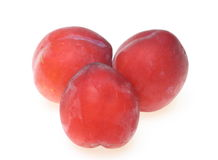Plums in a white background Stock Photography