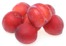 Plums in a white background Stock Images
