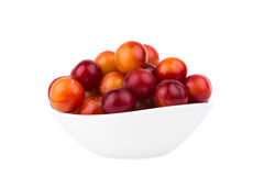 Plums in a white bowl isolated on white background Stock Photography