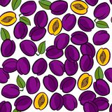 Plums on white fruit seamless pattern. Delicious ripe plums isolated on white background colorful fruit seamless pattern Stock Images