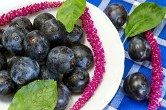 Plums on a white plate Royalty Free Stock Photos