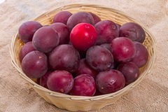 Plums with wicker basket Stock Image