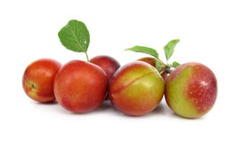 Plums wild ringlovs Stock Image