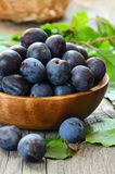 Plums in wooden bowl Royalty Free Stock Photos