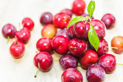 Plums on wooden Royalty Free Stock Photography