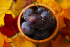 Plums in a wooden suit on a background of autumn leaves Royalty Free Stock Images
