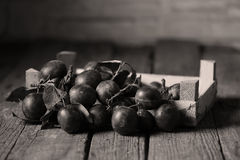 Plums in a wooden textured table Stock Photography