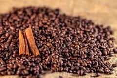 plundra för kaffe för bönor kanelbrunt Royaltyfria Bilder