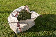 Plundra med nytt klippt gräs royaltyfri bild