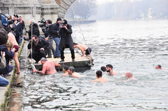 Plunge of polar bears into river Po, Turin, Italy. Stock Images