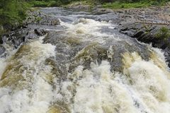 Plunging Waters in a Wilderness River Royalty Free Stock Images