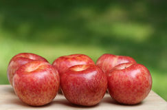 Pluot Plums. Fresh pluot plums, a cross between a plum and apricot Stock Images