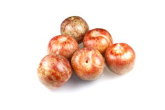 Pluots Stock Photography