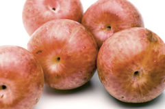 Pluots fruit hybrid plum and apricot Royalty Free Stock Photo