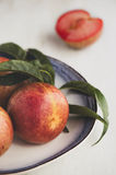 Pluots Stock Photo