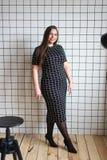 Plus formatmodemodell i tillfällig kläder kvinna på studiobakgrund, överviktig kvinnlig kropp arkivbild