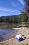 Plus frais et pêche Pôle en fonction Lakeshore Images stock