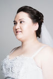 Plus size bride. With hairstyling and makeup studio shot Royalty Free Stock Image