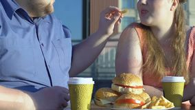 Plus size man treating his girlfriend french fries in cafe, overeating problem. Stock footage stock footage