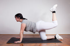 Plus size woman exercising at home Royalty Free Stock Image