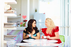 Plus size women sitting in cafe Royalty Free Stock Photography