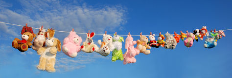 Plush animals Royalty Free Stock Images