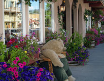 Plush Bear on a Bench on a Flower Lined Street Royalty Free Stock Photography
