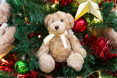 Plush bear with ornaments and Christmas tree background Royalty Free Stock Photo