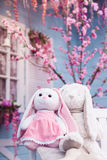 Plush Bunny sitting on white wooden bench at Blooming oriental cherry and blue background. Childhood and spring symbols Royalty Free Stock Photo
