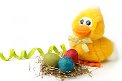 Plush chick and Easter eggs Royalty Free Stock Photo