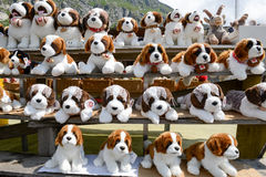 Plush dog Saint Bernard at a market Stock Images