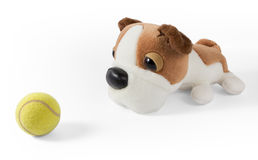 Plush Dog and Tennis Ball Royalty Free Stock Photos