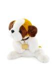 Plush dog toy isolated on a white background Royalty Free Stock Photography