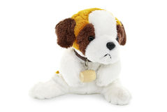 Plush dog toy isolated on a white background royalty free stock images