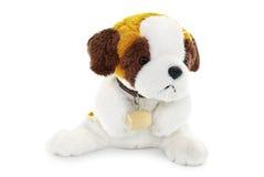 Plush dog toy isolated on a white background Royalty Free Stock Images