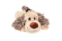 Plush dog toy Stock Image