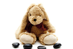 Plush hare with black stones Stock Photos