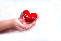 Plush heart in hands Stock Photos