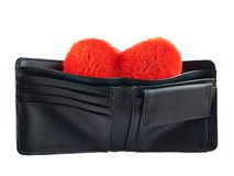 Plush heart in a wallet isolated Stock Photos