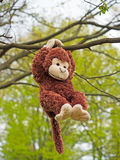 Plush Monkey Stock Photo