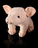 Plush pig Stock Photography