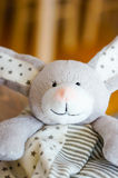 Plush rabbit Royalty Free Stock Photography