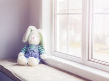 Plush soft toy bunny sitting near window toned with filters Royalty Free Stock Photo