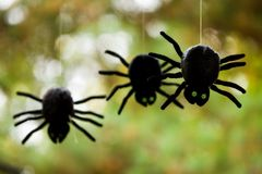 Plush Spiders Royalty Free Stock Photography