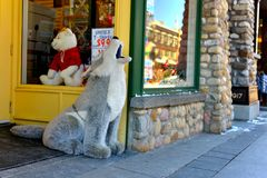 Plush stuffed dog Royalty Free Stock Photos