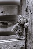 Plush teddy bear stand on wooden background black and white.  royalty free stock image