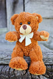 Plush Teddy Bear toy Stock Photo
