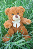 Plush Teddy Bear toy Royalty Free Stock Photos