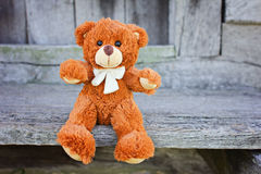 Plush Teddy Bear toy Stock Image